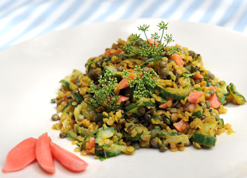lentil-2color-salad500.jpg