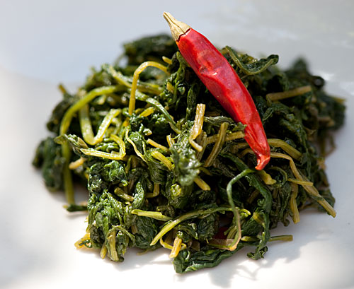 spicy-radish-leaf.jpg